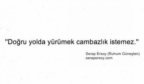 Serap Ersoy - Cambazlık (serapersoy.com)
