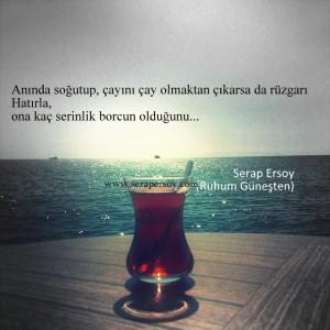 (Görsel alıntıdır.) ''Anında soğutup çayını, çay olmaktan çıkarsa da rüzgarı Hatırla ona kaç serinlik borcun olduğunu.'' Serap Ersoy (Ruhum Güneşten) Çay sevdasına, deniz sevdasına...