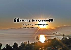 BİRKAÇ ŞİİR ÇIPLAK | Serap Ersoy (R.G)
